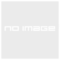 Рюкзак городской Granite Gear Verendrye 35 Harvest Red/Flint - Фото 2